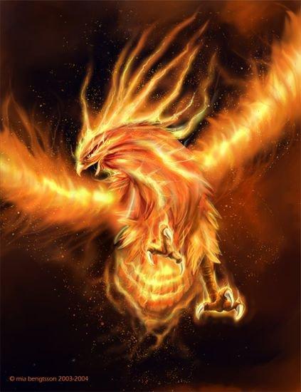 phoenix chevalier du zodiaque