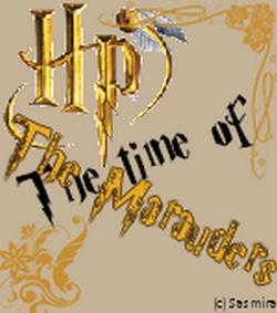 Fictions sur les personnages de Harry Potter
