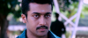 Massive Look surya