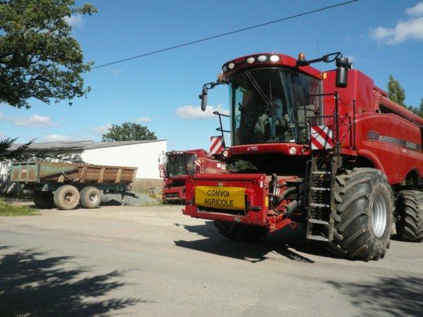 battage blé 2012 avec CASE ih 8230 coupe de 9m