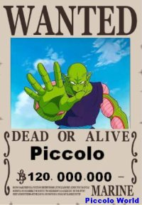 Piccolo Wanted