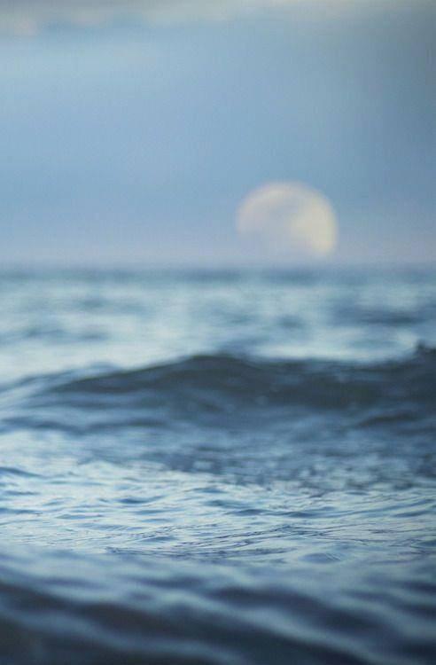 """""""Face à l'océan, j'en oubliais le temps. Je pouvais passer des heures à contempler l'eau qui était d'un bleu azur, c'était assez impressionant d'ailleurs. Et au moment où le soleil allait se coucher, elle se déchainait. Folle et ambitieuse, elle dévalait sur le sable.   C'est fou comme il en faut peu pour partir loin. Dans un monde lointain, sans trop de chemins."""""""