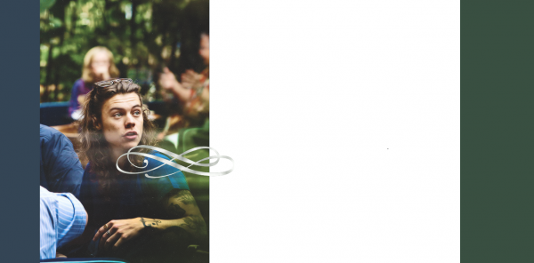 Habillage *Harry Styles*_00.8