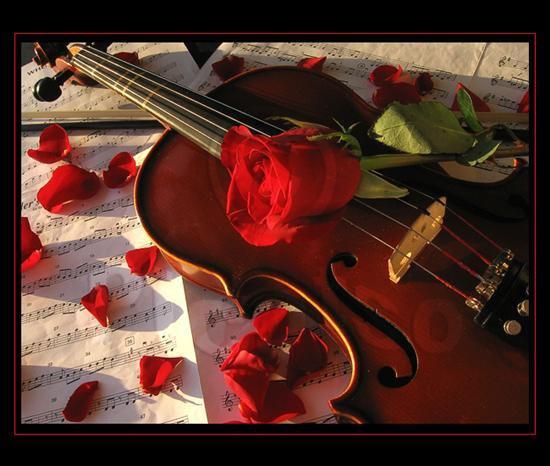 La mélodie du coeur!