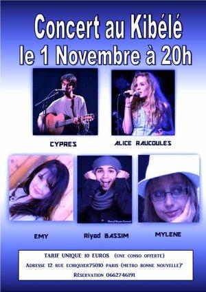 Interview de la chanteuse Alice Raucoules pour notre blog !