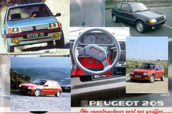 PEUGEOT 205 GTI 1.6l 105 CV