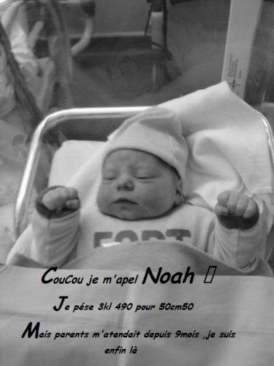 Aujourd'hui il est née