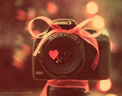 La photographie, c'est l'art de mettre en accord la tête, le coeur et l'objectif