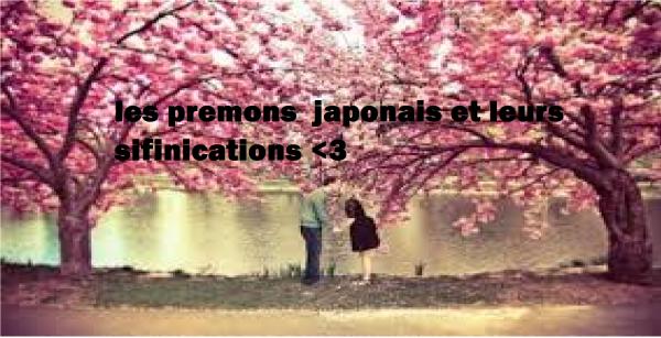 premon japonais et les sinifications <3 =)