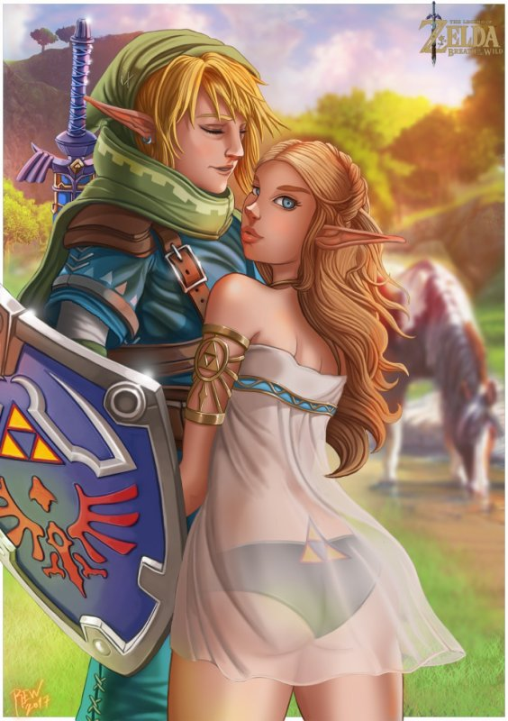 Zelda breath