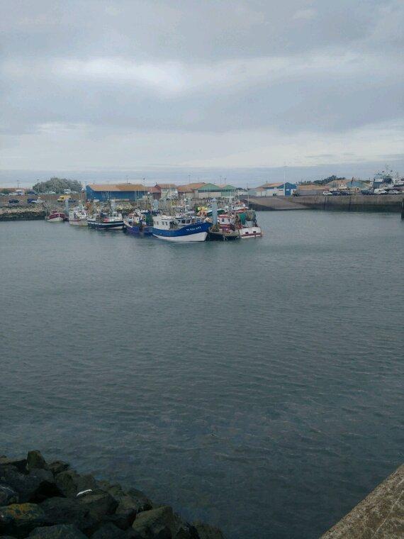 Port de la Cotiniere