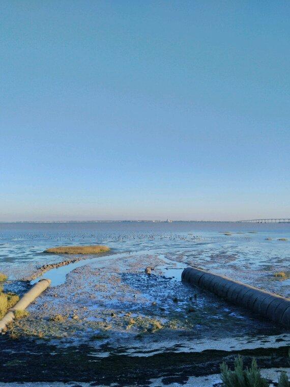La mer cet après midi .