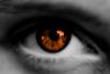 Oeil-des-morts
