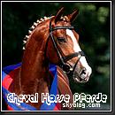 Photo de cheval-horse-pferde