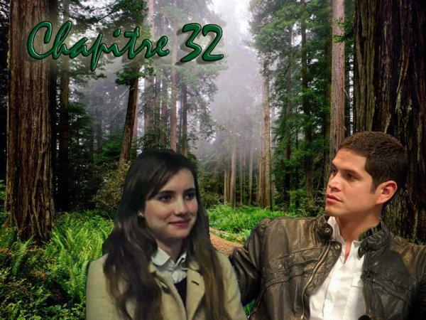 """Chapitre 32 : """"Je veux que chaque nouveau jour se déroule à tes côtés"""""""