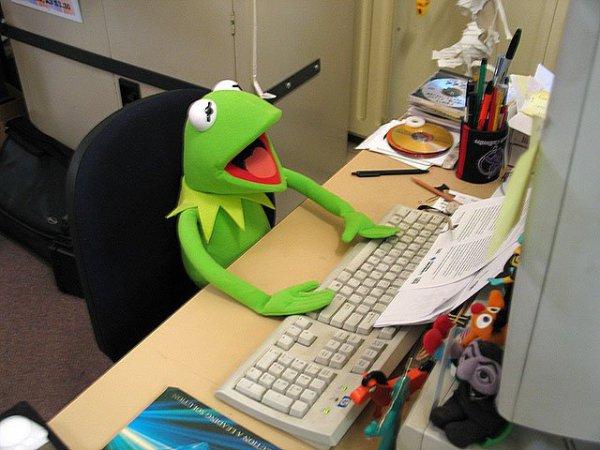 grenouille informaticienne que c'est drole !!!