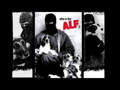 Animal Liberation Front