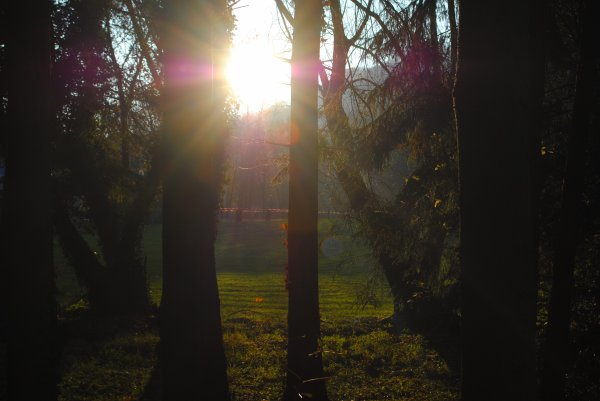 12 Novembre 2011