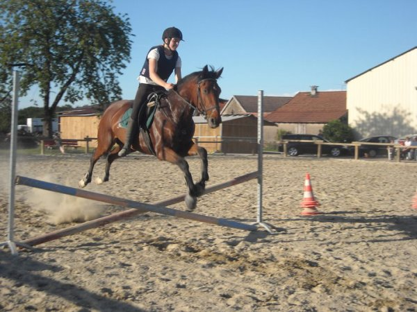 Cours Obstacle 27 juillet