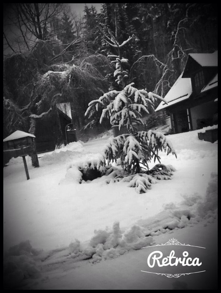L'Allemagne en hiver.