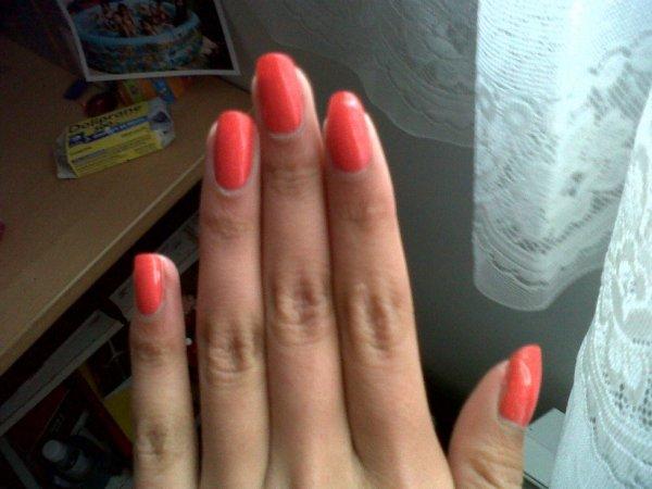 Magnifique rose~orange <3