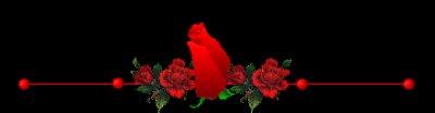 ...-*-.(l).-*-.(l).-*-.(l)..trés bon mardi mes amis(es)..bisous...(l).-*-.(l).-*-.(l).-*-...