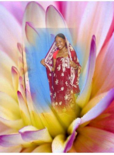 Blog de rosedaimer