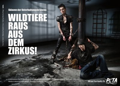 Tokio Hotel contre la cruauté animal