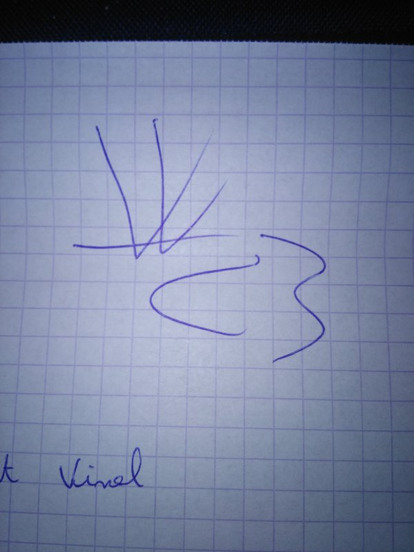 Vincent Vinel