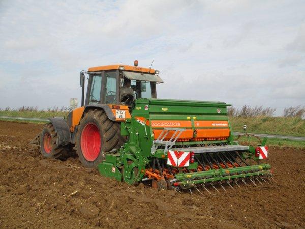 Semis de blé