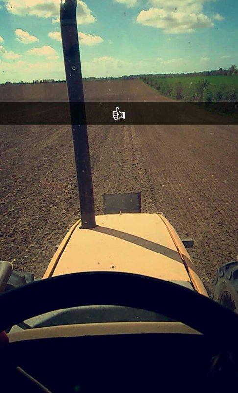 préparation terre à maïs