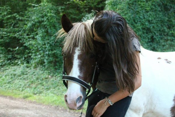 """""""Il n'y pas de secret aussi intime que ceux d'un cavalier et de son cheval."""""""