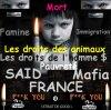 france-mafiya