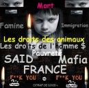 Photo de france-mafiya