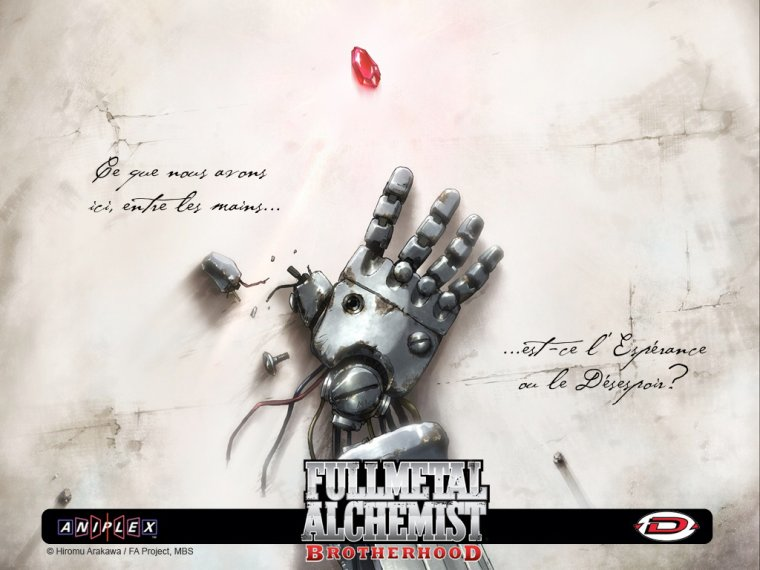 full metal alchemist brotherhood vf