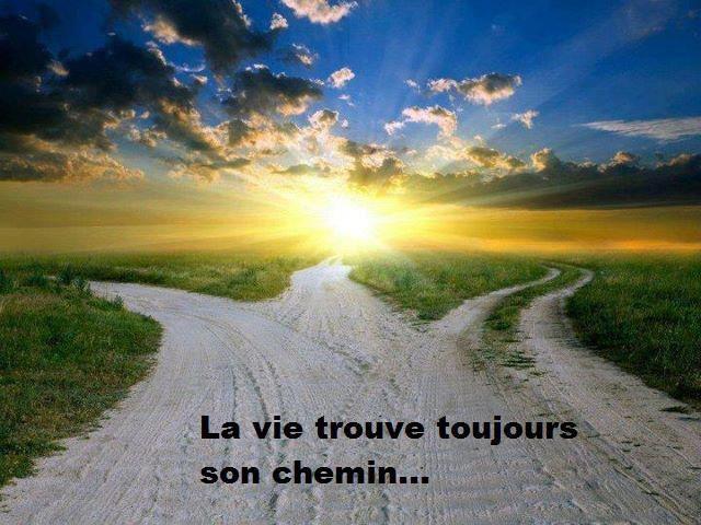 ....Le chemin ....La route.....