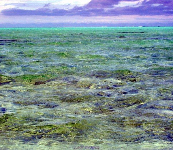 Mer De Nouméa ... L'eau est encore plus claire que dans une bouteille d'eau de source !