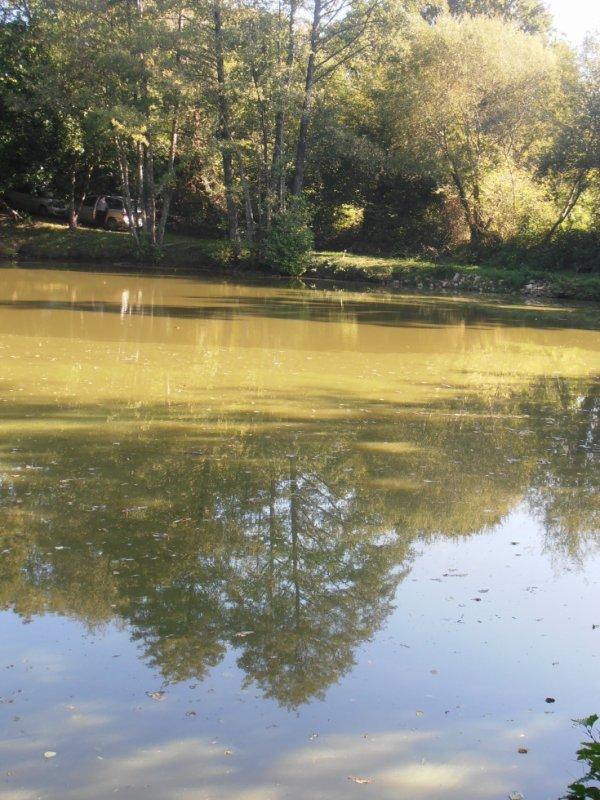 lac ( deux-sevres )