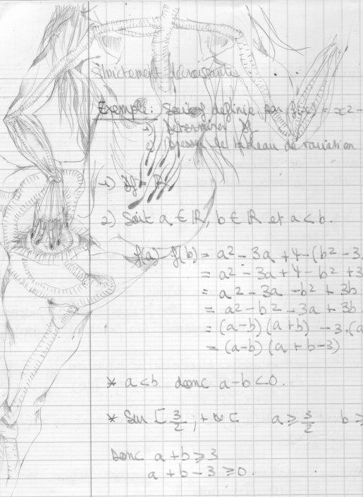 Mathématiques ou Ennui morbide