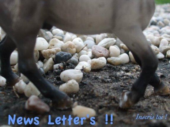 News Letter's