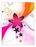 Photo de butterflyandcolor