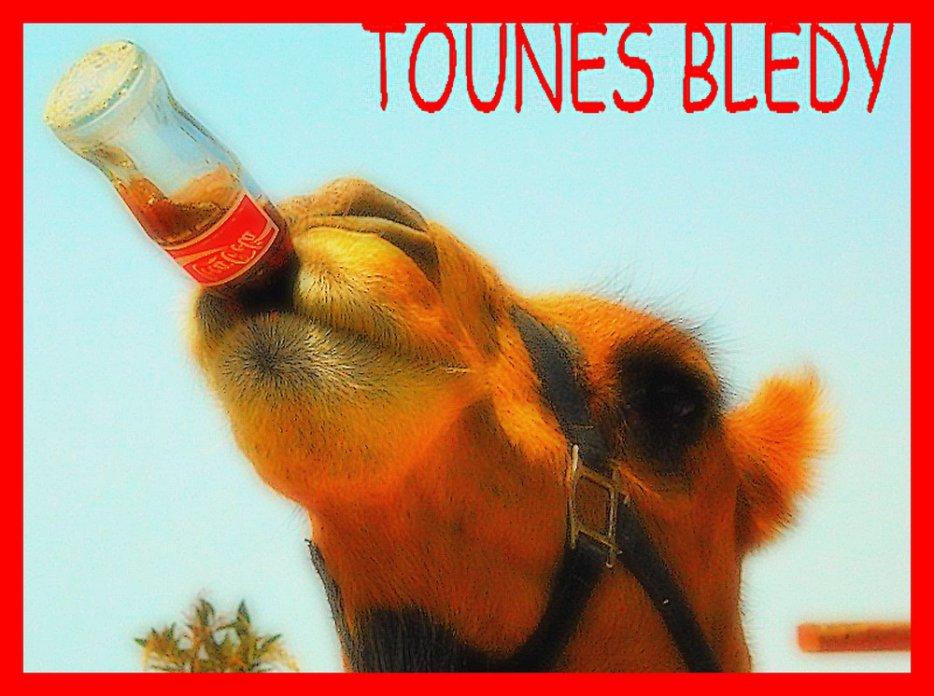 *♥ TOUNESSS ♥ * <3 Tounsiadu313