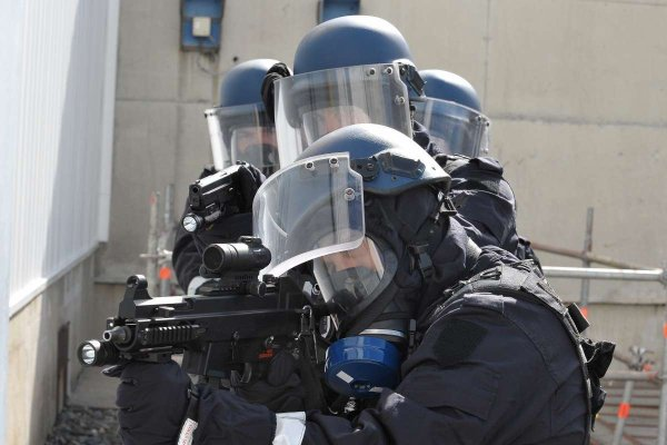 Peloton Spécialisé de Protection de la Gendarmerie