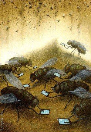 Des mouches de la place publique