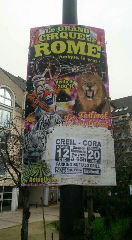 LE GRAND CIRQUE DE ROME l unique le vrai et  arrive dans la ville de Creil du samedi 12 décembre au 20 décembre seance a 15 heure visite du zoo 1 euros