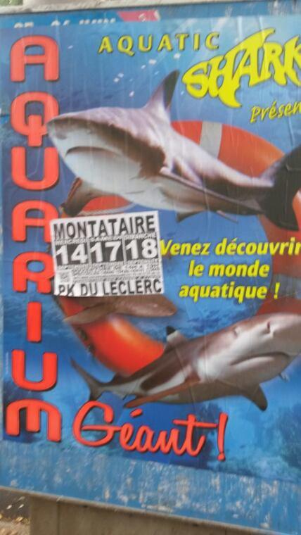 AQUATIQUE SHARK A MONTATAIRE (OISE) SUR LE PARKING LECLERC DU MERCREDI 14 SEPTEMBRE AU DIMANCHE 18 SEPTEMBRE 2016