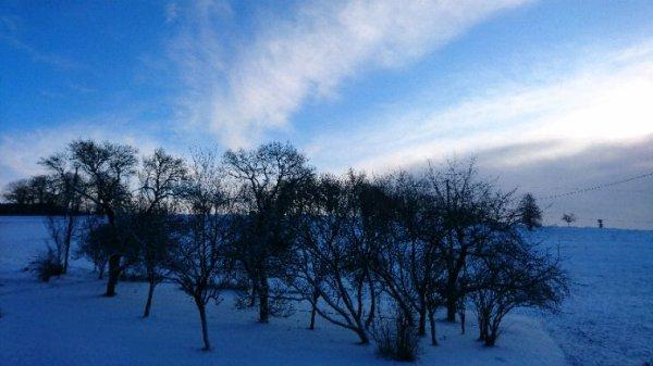 Il neige, il neige... Bon ça gèle aussi...au petit matin !