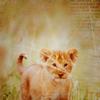 Photo de AnimalEarth