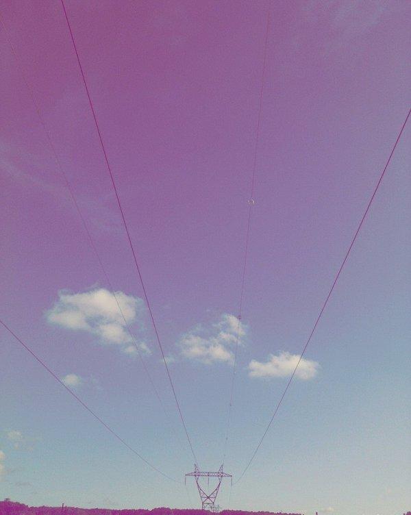 • × • [   Artiicle #_ oo5 ] • ×  •
