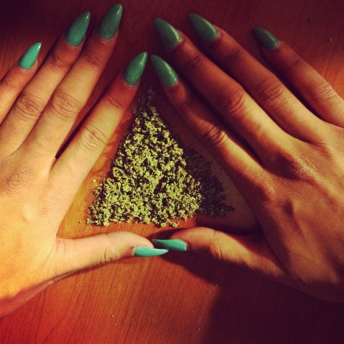 WeedUliminati (Y)
